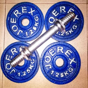 dumbbell-Plate-and-Stick-2-Fitness