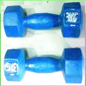 Blue-Iron-Dumbbell-Fitness